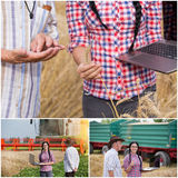 Barley harvesting collage. Set of images with young women engineer and old peasant following cereal production process Royalty Free Stock Photo