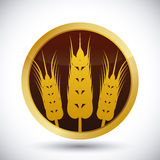 Barley Icons Royalty Free Stock Photo
