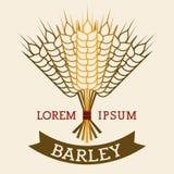Barley Icons Stock Image