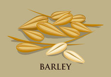 Barley Icons royalty free illustration