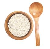 Barley isolated on white Stock Photography