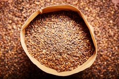 Barley malt in a leather bag. Barley malt, used for the production of craft and home beer in a leather bag. Top view from above royalty free stock image