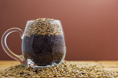 Barley mug. Beer mug filled with dark and pale malts Stock Photos