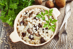 Barley with mushrooms Stock Images