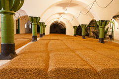 Barley in old brewery in czech republic - ready for beer. Barley in old brewery in czech republic - ready for great beer Royalty Free Stock Images