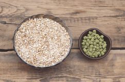 Barley with pellets of hops Royalty Free Stock Photos