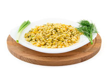 Barley porridge in a plate with vegetables, dill and green onion, selective focus.  royalty free stock photography