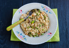 Barley porridge Royalty Free Stock Image
