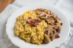 Barley Risotto Royalty Free Stock Image