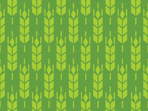Barley or Rye field in vector pattern Royalty Free Stock Image