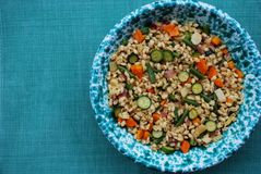 Barley salad with vegetables Stock Images