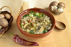 Barley soup with mushrooms Stock Photo