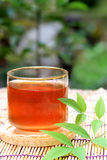 Barley tea Royalty Free Stock Images