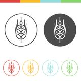 Barley vector icons. Vector set of barley icons in thin line style Royalty Free Stock Images