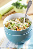 Barley and vegetables ragout Royalty Free Stock Photography