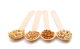 Barley, wheat, buckwheat, oat groats in a wooden spoon isolated Royalty Free Stock Photo