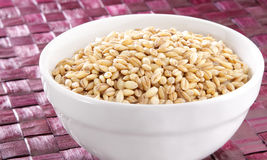 Barley in white bowl Royalty Free Stock Photography
