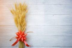 Barley on white wood Stock Photos