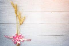 Barley on white wood Royalty Free Stock Images