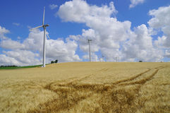 Barley and wind farm Stock Photography