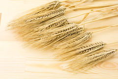 Barley on wood board Royalty Free Stock Photos