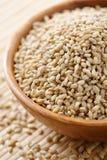 Barley Stock Images