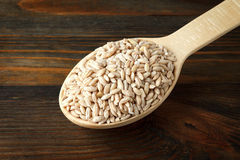 Barley in a wooden spoon Royalty Free Stock Images