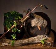 Barleymalt avec des houblon Photographie stock