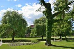 Barlinek, lago, cidade e arredores Fotos de Stock Royalty Free