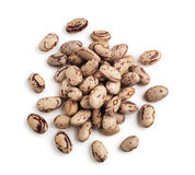 Barlotti Beans Royalty Free Stock Photo