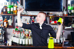Barman in action. Young professional barman in action with shaker making cocktail drinks Royalty Free Stock Image