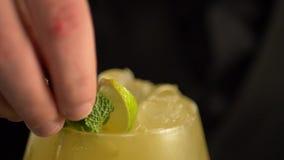 Barman ajoutant les feuilles en bon état fraîches dans la boisson jaune alcoolique avec des glaçons banque de vidéos