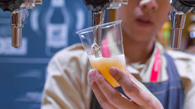Barman or bartender pouring a draught lager beer from beer tap Royalty Free Stock Image