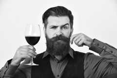 Barman with curious face holds alcoholic drink. Waiter with tray and red wine glass. Service and restaurant. Barman with curious face holds alcoholic drink Royalty Free Stock Photography
