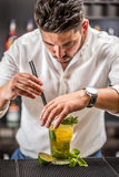 Barman die mojitococktail voorbereiden Stock Foto