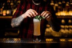 Barman die smakelijke Sherry Cobbler-drank in een cocktailglas verfraaien royalty-vrije stock fotografie