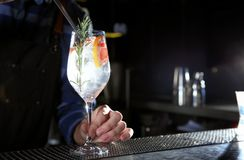 Barman faisant à genièvre de pamplemousse le cocktail tonique au compteur dans le bar, plan rapproché images libres de droits