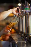 Barman hands pouring a lager beer in a glass. Stock Photos