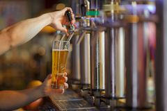 Barman hands pouring a lager beer in a glass. Royalty Free Stock Photography