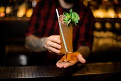 Barman holding a glass of tasty Sherry Cobbler drink decorated w. Ith mint leaves and orange slice on the bar counter stock photo