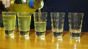 Barman pouring alcohol to the five shots. Close up stock video footage
