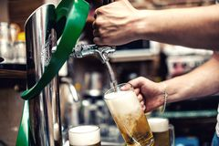 Barman pouring or brewing a draught beer at restaurant, bar Royalty Free Stock Images