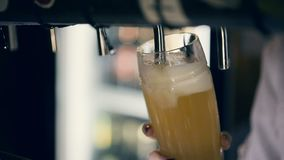 Barman Pouring Draft Beer in de Bar stock videobeelden