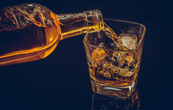 Barman pouring whiskey with ice cubes in glass on black background, cool atmosphere Stock Photography