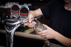 The barman pours beer. Into the mug from the tap stock photography