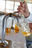Barman pours a light foamy beer into a large mug during the Oktoberfest party. Royalty Free Stock Photography