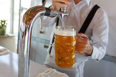 Barman pours a light foamy beer into a large mug during the Oktoberfest party. Stock Photo