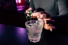 Barman przygotowywa koktajl obrazy stock