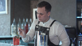 Barman robi koktajlowi i dekoruje Obrazy Stock