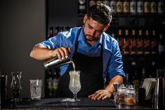 Barman with shaker Royalty Free Stock Photos